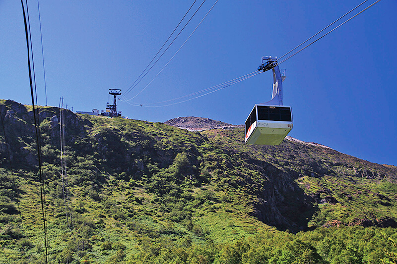 関東屈指のリゾート地「那須高原」♪大自然の中で遊んで、食べて、癒される!