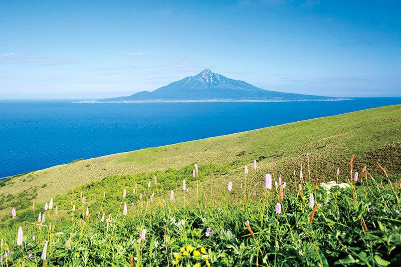 礼文島の大自然