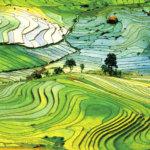 まさに絶景!!世界でも有数の美しい棚田「ベトナム・サパの棚田」を見に行こう!!