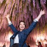 夜の大藤棚は絶対見たい!世界に認められた栃木県あしかがフラワーパーク!