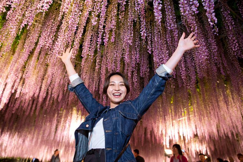 大藤棚のライトアップは絶対見たい!世界に認められた栃木県・あしかがフラワーパーク!