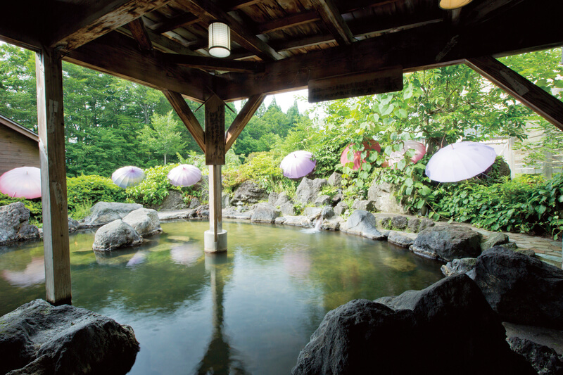 田沢湖高原プラザホテル山麓荘