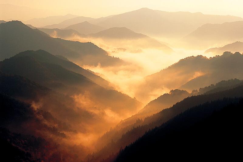 雲の上に浮かぶ秘境! 奈良県の野迫川村で雲海を見よう♪