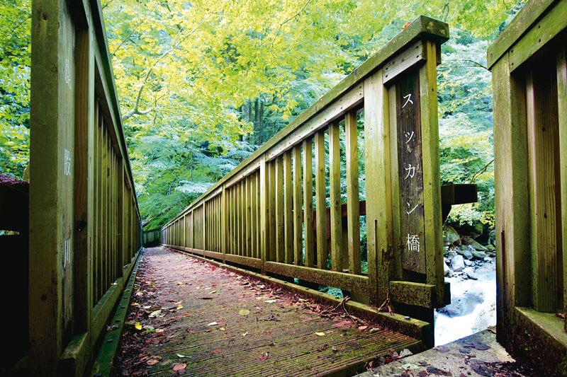 雄飛の滝線歩道ハイキングルート