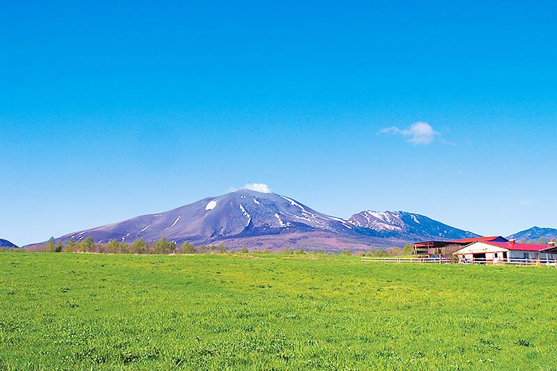 牧場と浅間山