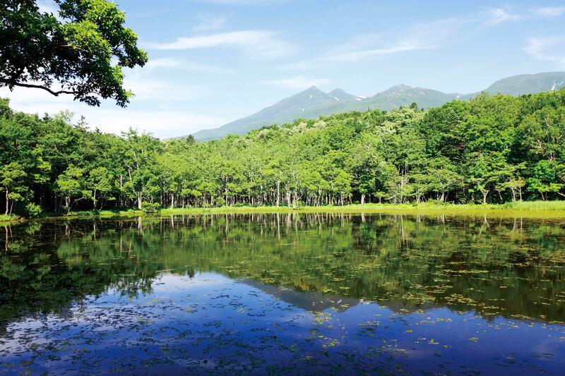 知床五湖 地上遊歩道