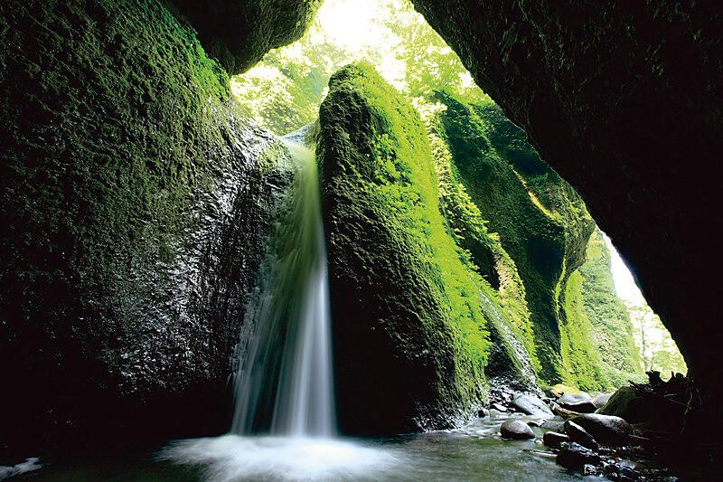 苔むした洞窟に落ちる滝がフォトジェニック!兵庫県「シワガラの滝」をご紹介♪