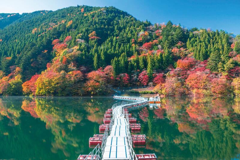 自然いっぱいの東京を楽しめる!日帰りで東京の秘境・奥多摩に行ってみよう♪