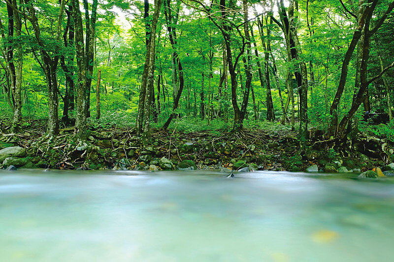 清流と涼を求めて…。川遊びが楽しめる栃木県那須塩原市の「木の俣渓谷」へ行こう!