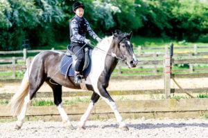 乗馬を体験する女の子