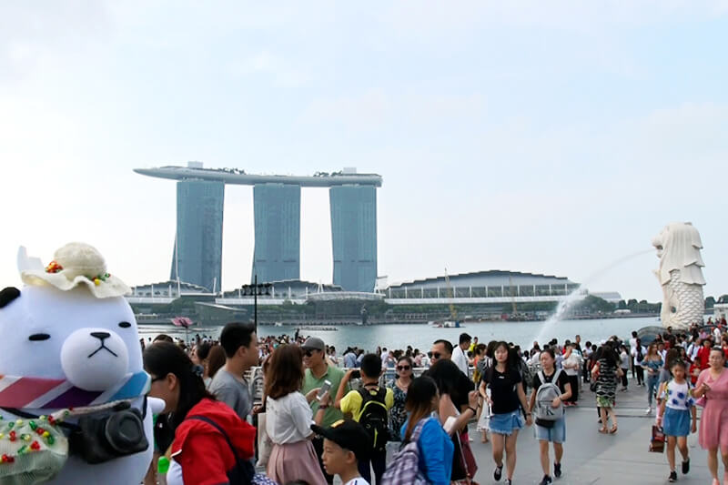 シンガポールで今ブームのフカヒレ×パクチー!ジーンちゃんが驚きの組み合わせをレポート!