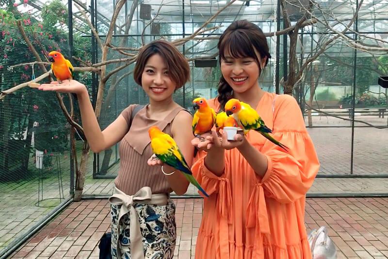 富士花鳥園。左からRihwa、三原勇希 ©TBS