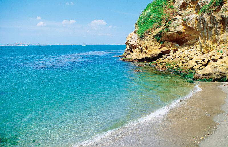 猿島の浜辺