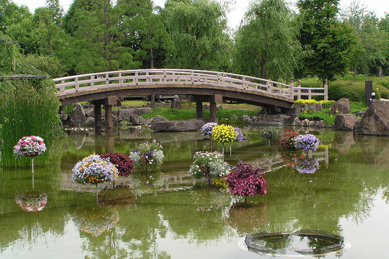 季節を問わず色とりどりの花が楽しめる!滋賀県草津市の「水生植物公園みずの森」ってどんなところ?