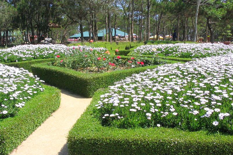 ダラット ガーデン