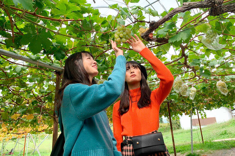 やまふじ葡萄園。左から横田真悠、大友花恋 ©TBS