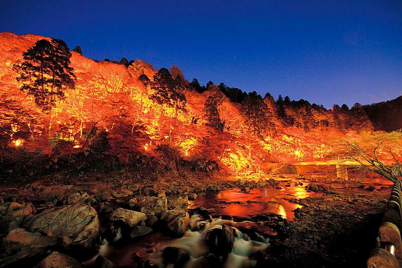 夜はライトアップも開催!東海随一の紅葉スポット、愛知県の「香嵐渓」に行ってみよう