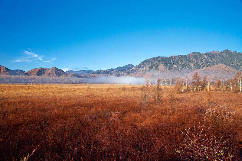 奥日光で絶景ハイキングをしよう♪栃木県「戦場ヶ原」で草紅葉と星空を満喫!
