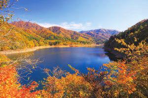 九頭竜湖 紅葉