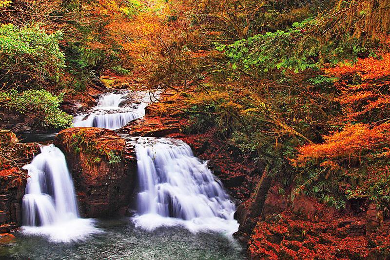 忍者修行の地!? 紅葉が美しい三重県の「赤目四十八滝」をご紹介