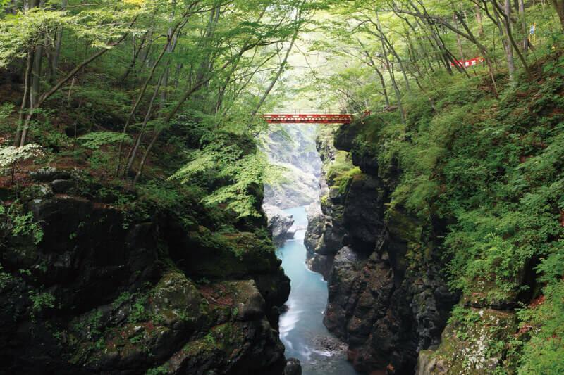 吾妻峡 吾妻渓谷 鹿飛橋 2013