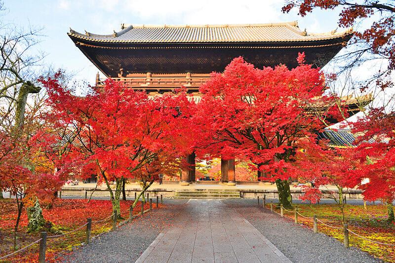 紅葉の南禅寺 山門