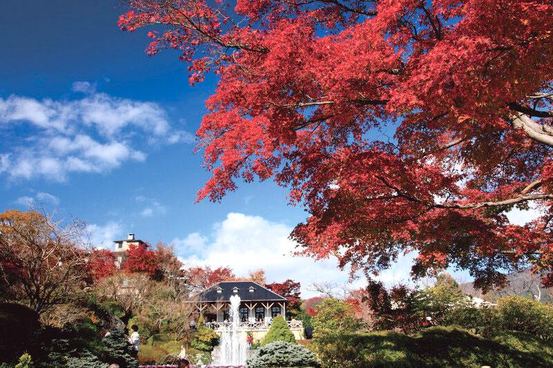 秋の強羅公園