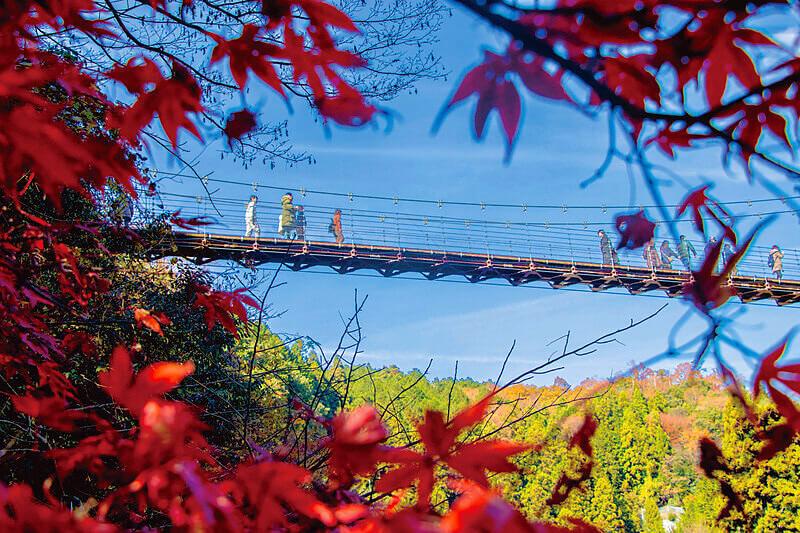 秋色に染まった峡谷と清流は絶景!今年の紅葉狩りは岐阜県「多良峡」へ行ってみよう
