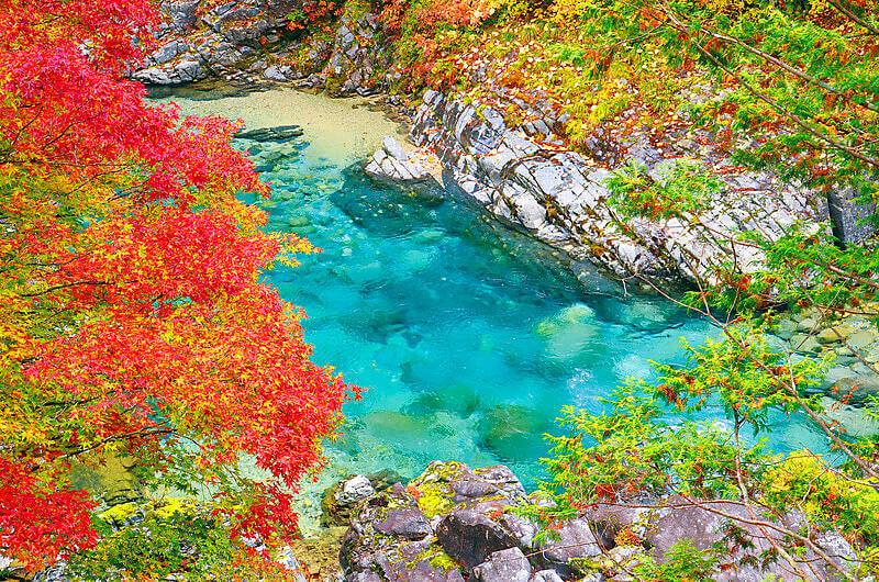 阿寺渓谷と紅葉