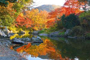 嵐山渓谷 埼玉の秋