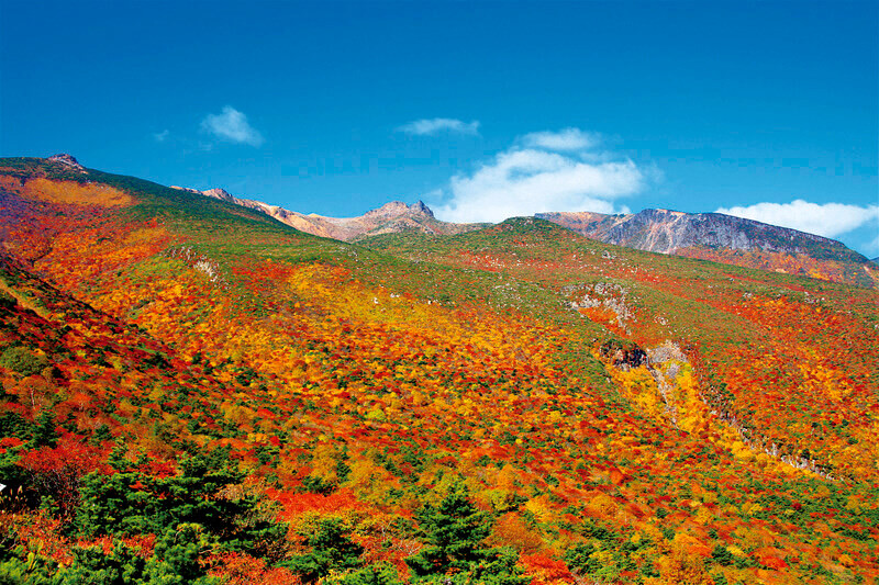 秋の福島で高原トレッキング!安達太良山と温泉、フルーツ狩りなんていかがでしょう?