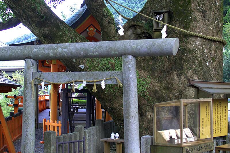 熊野那智大社 樟霊社