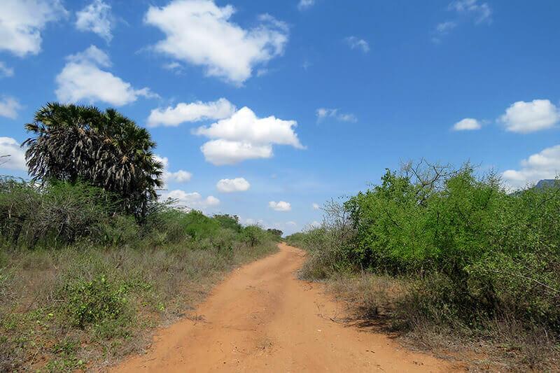 アフリカ・タンザニア