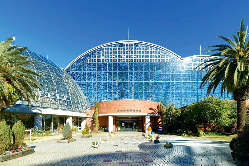 ジャングル探検気分を味わえる東京「夢の島熱帯植物館」