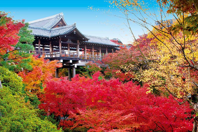 関西有数の紅葉スポット!京都五山のひとつ「東福寺」
