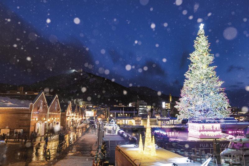 北海道・函館の巨大ツリーは必見!大切な人と過ごしたい「はこだてクリスマスファンタジー」