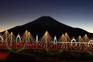 花の都公園のイルミネーション 富士山 山中湖 2008年