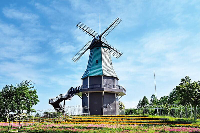 オランダ型風車がシンボル♪茨城県の霞ヶ浦総合公園へイルミネーションを見に行こう