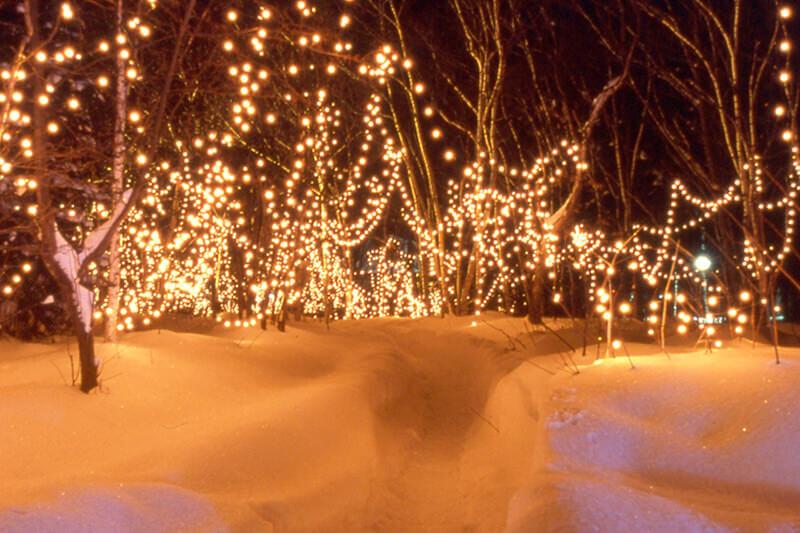 北海道・川湯温泉にダイヤモンドダストを見に行こう!幻想的なライトアップも必見!