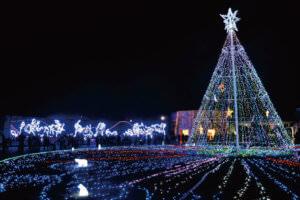 国営讃岐まんのう公園 クリスマスイルミネーション
