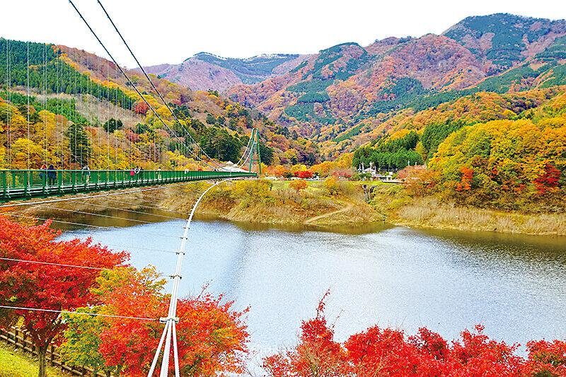 みじ谷大吊橋 紅葉 2015/11