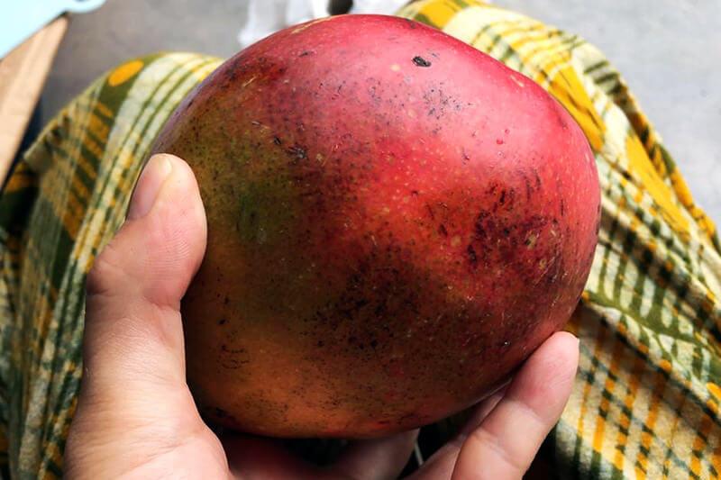 マラウイのアップルマンゴー
