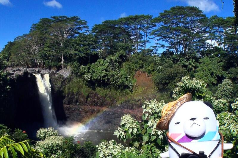 ジーンちゃんがハワイ・ハワイ島へ!激レア動物に接近できる大迫力のナイトボートツアーを体験!
