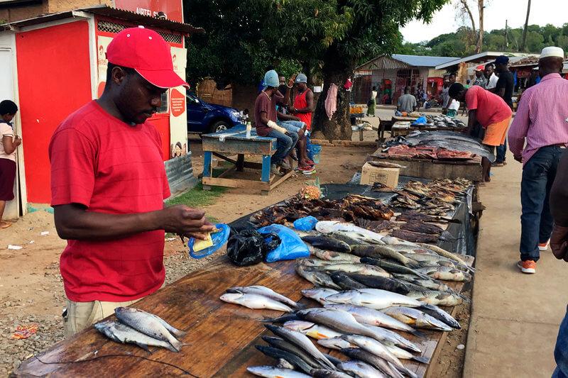 マラウイの魚市場