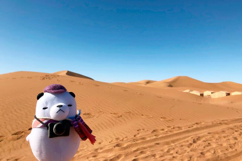 ジーンちゃんはモロッコを代表する都市マラケシュへ ©関西テレビ