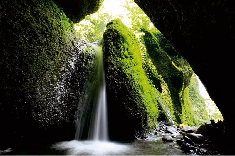兵庫県「シワガラの滝」がまさに秘境の絶景!! 苔むした洞窟に落ちる滝がフォトジェニック