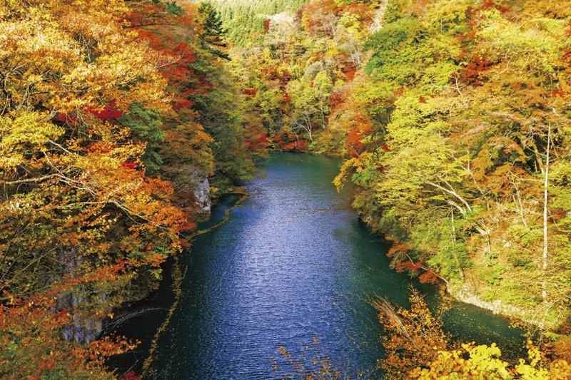 東京から車で約2時間! 群馬県「猿ヶ京温泉」で自然を満喫しよう