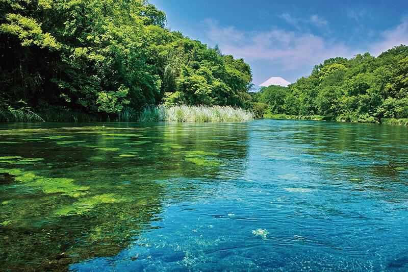 柿田川湧水 富士山と清流