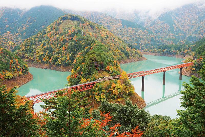 大井川鐡道 奥大井レインボーブリッジ 紅葉の風景