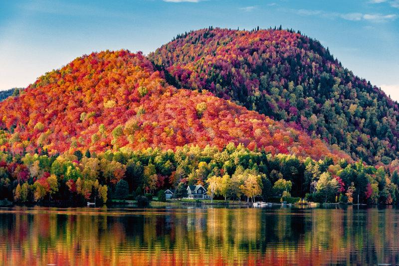 カナダを象徴する紅葉の名所「メープル街道」のおすすめスポットをご紹介します!!